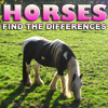 Differences: Horses