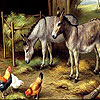 Donkeys and  cute friends puzzle
