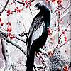 Long tailed bird slide puzzle