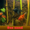 Sea sand. Find objects
