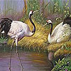 Storks on the lake slide puzzle