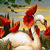 Swan and flowers slide puzzle
