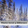 Winter forest 5 Difference