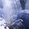 Jigsaw: This Winter River