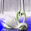 Love swans in the lake slide puzzle