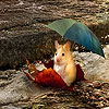 Mouse in the rain slide puzzle
