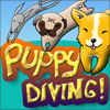 Puppy Diving