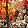 Wolves in the woods slide puzzle